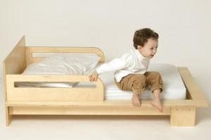 Petra Toddler Bed