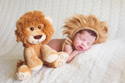Os leõezinhos da Aracelli